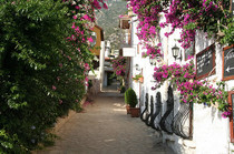 One of the streets within Kalkan's old town